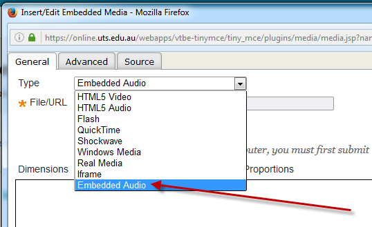 Embedded audio type