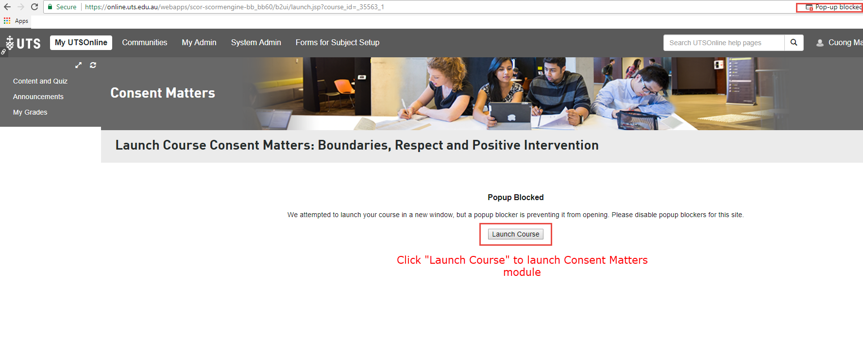 If you have a pop-up blocker you will be asked to launch the course
