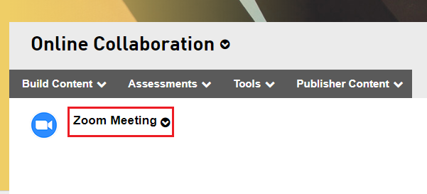 Step 3 of 9: Click on the Zoom meeting link to launch the Zoom interface.