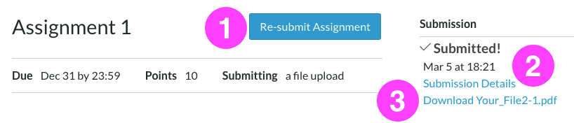 "A Canvas Assignment page as it displays once you've successfully submitted an assignment. There is a notice on the right side of the screen that confirms ""Submitted!"" followed by links to your submission details and the submitted file. There is a link to Re-submit Assignment."