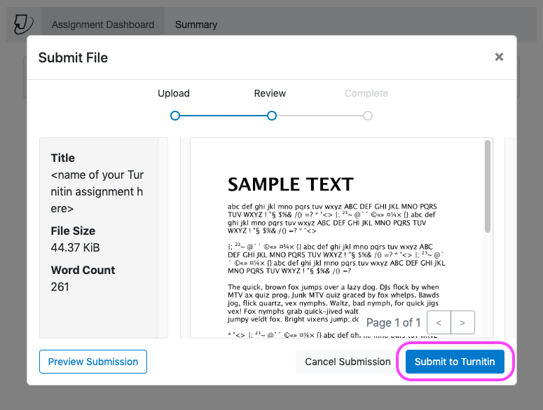 A Turnitin Submit File pop-up in Canvas as shown when reviewing a file before final submission. A small preview of the file uploaded is displayed alongside the file details, followed by links to Preview Submission larger, Cancel Submission or Submit to Turnitin.